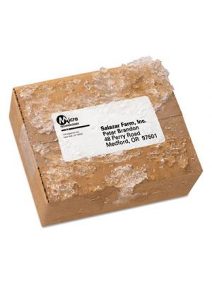 WeatherProof Durable Mailing Labels with TrueBlock Technology, 2x4, White, 5000