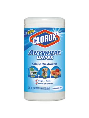 Disinfecting Wipes, 7 x 8, Fragrance-Free, 75 Wipes/Canister, 6/Carton